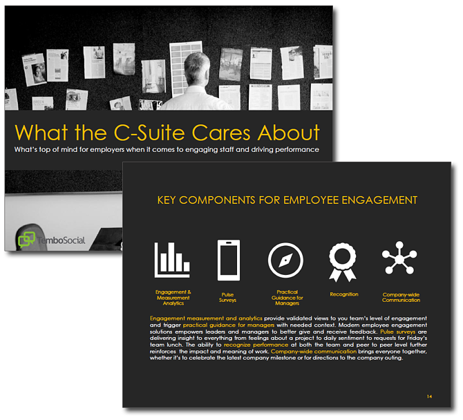 HRWins Report - What the C-Suite Cares About